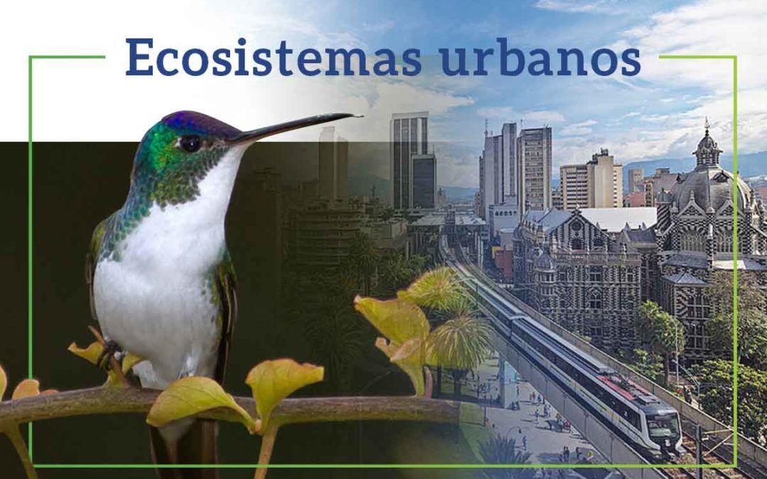 Ecosistemas Urbanos por AmbientalMente SAS | Consultoría en gestión ambiental